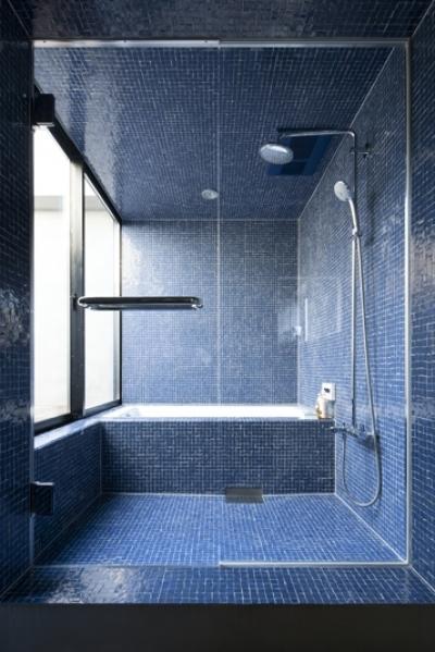 バスルーム (渋谷の住宅)