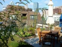 野菜作りを楽しむ屋上 (家庭菜園を中心にした屋上庭園)