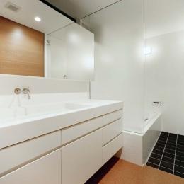 015軽井沢Tさんの家 (バスルーム)