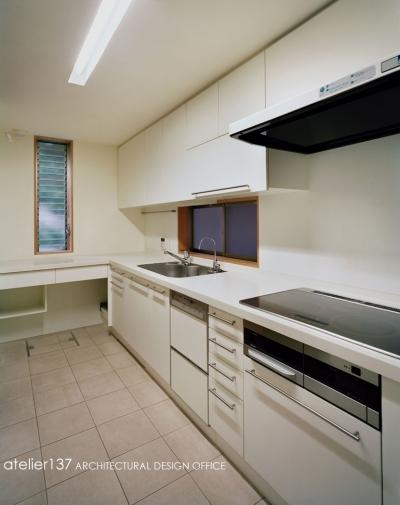002八潮Fさんの家 (キッチン)