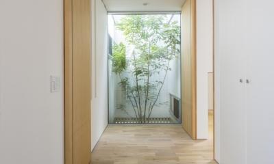 中庭のある平屋の家 (玄関2)