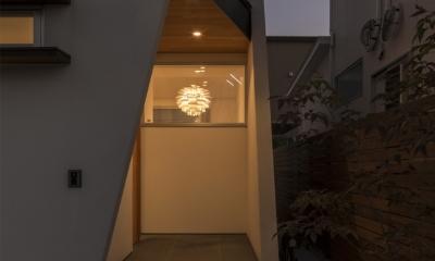 中庭のある平屋の家 (アプローチ(夜景))