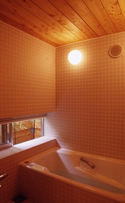 浴室 (高槻のスキップフロアハウス スキップフロアで狭い敷地を有効に使いたおす)