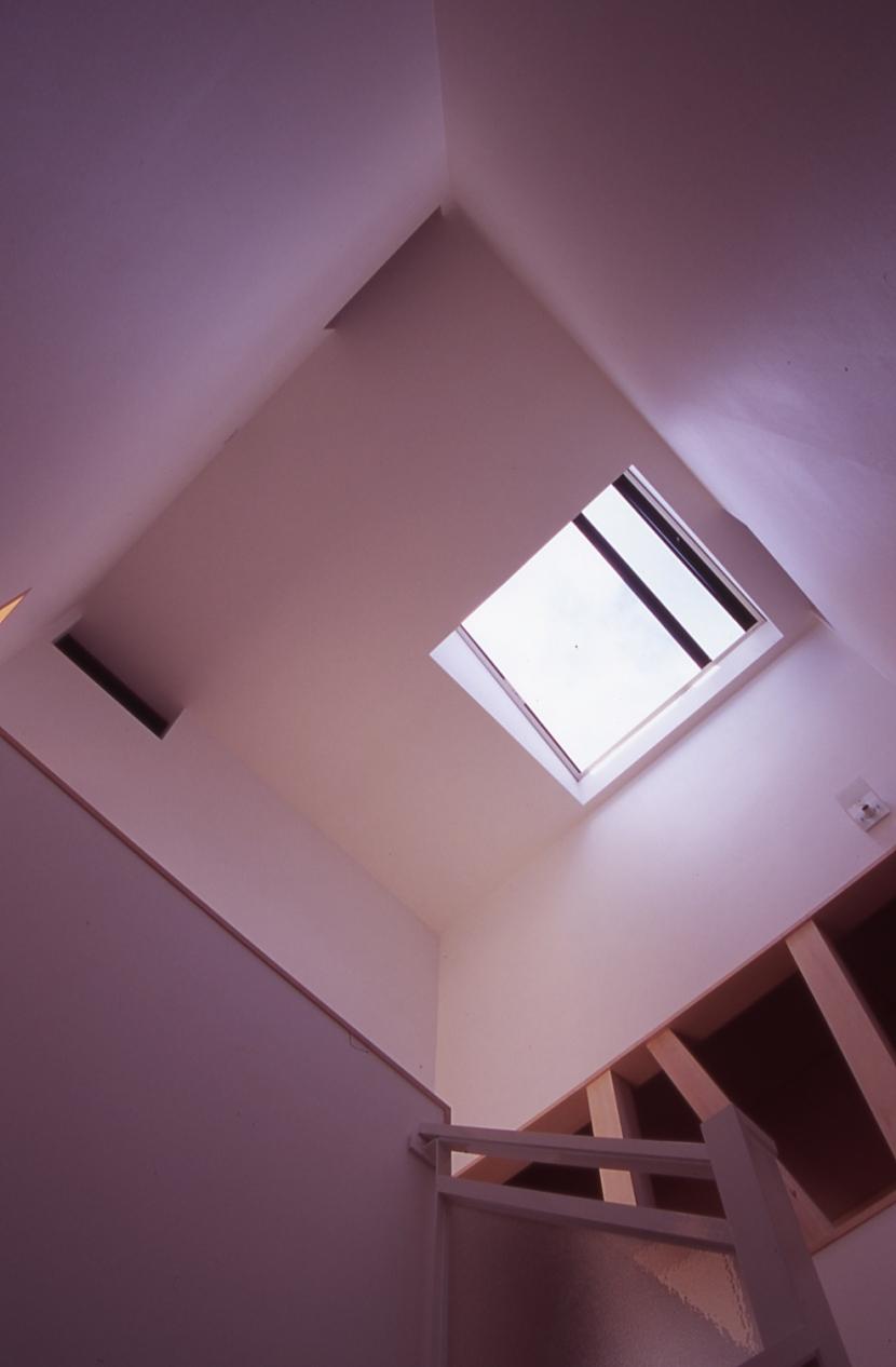 大階段のある二世帯住宅|家の中心に光に満ち溢れた階段を設け、親世帯と子世帯をつなぐ (階段)