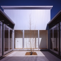 上尾の家~神殿型中庭住宅 (中庭)