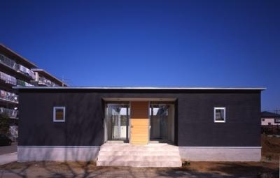 上尾の家~神殿型中庭住宅 (外観)