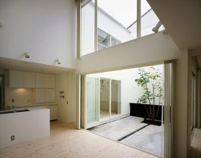LDK1 (国立の家~中庭+ルーフガーデンの家)