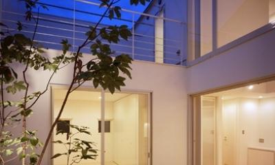 中庭|国立の家~中庭+ルーフガーデンの家