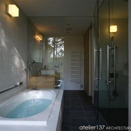 010軽井沢Tさんの家 (バスルーム)