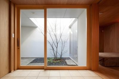 足立のわんルーム (玄関)
