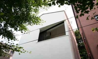アトリエのあるスキップフロアの家 OUCHI-03 (緑道側外観)