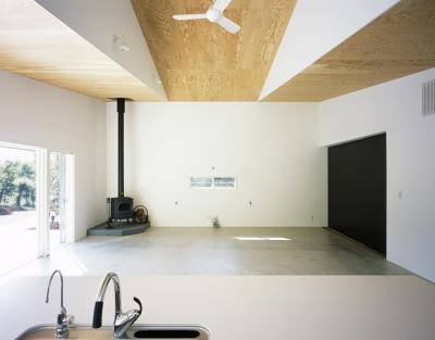 山梨の家~勾配天井の別荘 (LDK1)