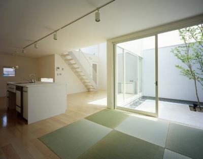 中庭2 (栗橋の家~中庭+吹抜け+ルーフバルコニーの家)