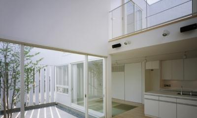 栗橋の家~中庭+吹抜け+ルーフバルコニーの家 (LDK2)