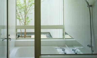 栗橋の家~中庭+吹抜け+ルーフバルコニーの家 (浴室)
