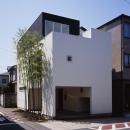 西久保の家~竹屏風の家