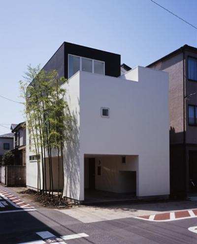 西久保の家~竹屏風の家 (外観1)