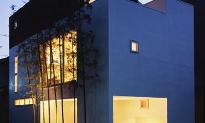 西久保の家~竹屏風の家 (外観2)