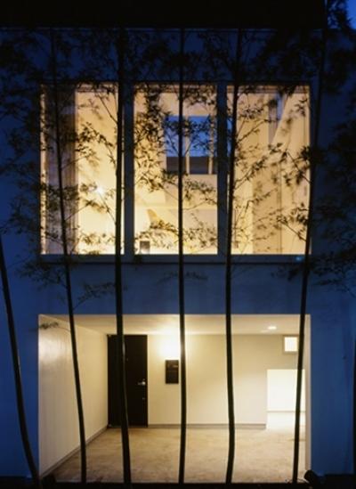 西久保の家~竹屏風の家 (夕景)