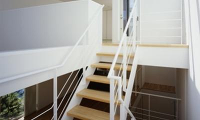 西久保の家~竹屏風の家 (階段)