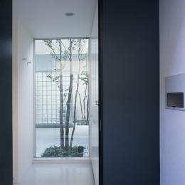 新小岩の家~4つの中庭のある家 (玄関)