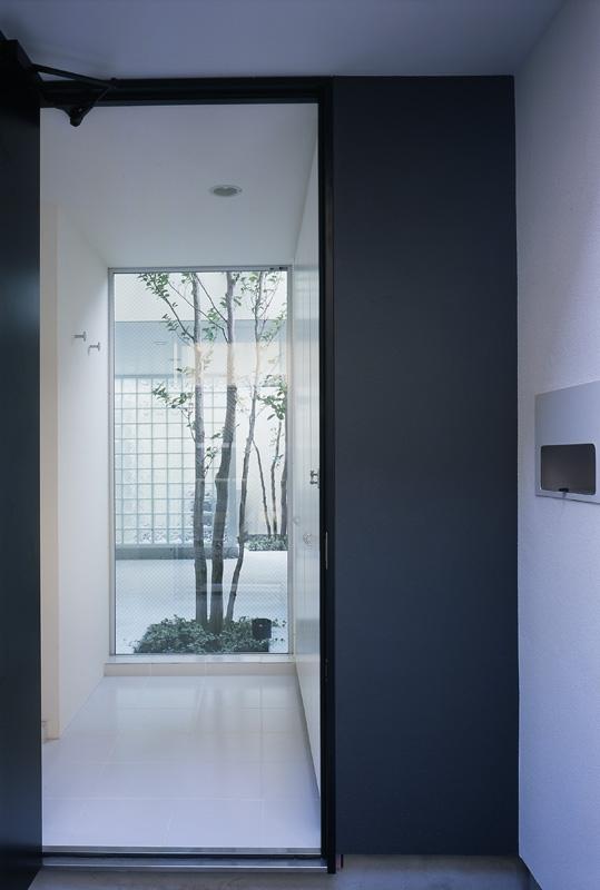 新小岩の家~4つの中庭のある家の写真 玄関