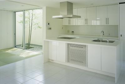 キッチン (新小岩の家~4つの中庭のある家)