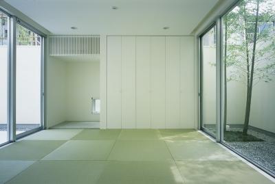 和室1 (新小岩の家~4つの中庭のある家)