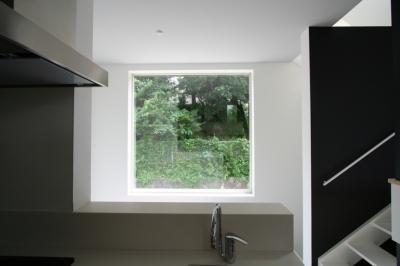キッチンから見る借景窓 (アトリエのあるスキップフロアの家 OUCHI-03)