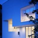 下井草の家~スキップフロア+ルーフガーデンの家の写真 夕景