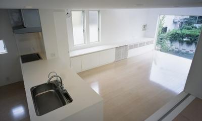 下井草の家~スキップフロア+ルーフガーデンの家 (LDK2)