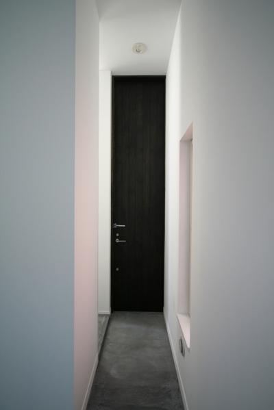 玄関ドア (アトリエのあるスキップフロアの家 OUCHI-03)