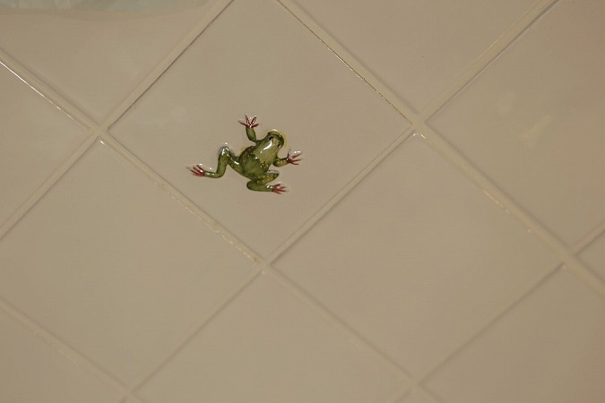 東京都江東区_子どもが走り回って、元気に育つ家の部屋 立体的なカエルタイル