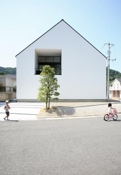 シンプルな外観 (鳥取のミニマルデザインの家 OUCHI-02)