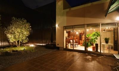 シンボルツリー|中庭のある レストラン