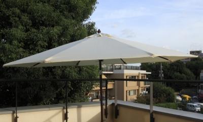 公園を借景にしたスキップフロアの家 (屋上)