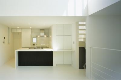 キッチン1 (上石神井の家~囲まれた家)