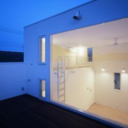 上連雀の家~北側採光のリビング (ルーフガーデン)