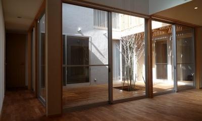 銚子の家 (リビングダイニングから中庭ウッドデッキを見る)