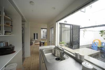 キッチンから見る中庭とリビング (オウチ15・静岡の二世帯住宅)