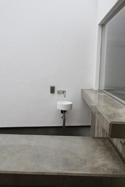 中庭の水屋 (静岡の二世帯住宅  中庭に小屋を持つOUCHI-15)