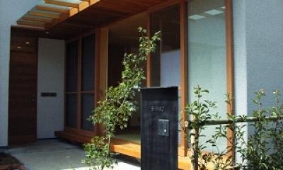 坪井町の家 (玄関前ポーチと和室の濡縁)