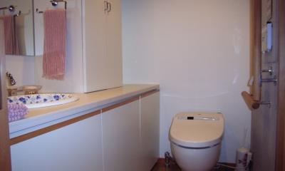 北区神谷の家 (トイレ、カウンター・収納はオリジナル)