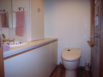 トイレ、カウンター・収納はオリジナル (北区神谷の家)