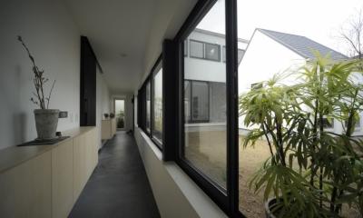 静岡の二世帯住宅  中庭に小屋を持つOUCHI-15 (二世帯を繋ぐ玄関廊下)