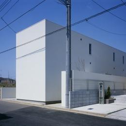 白井の家Ⅱ~東西庭の家 (外観1)