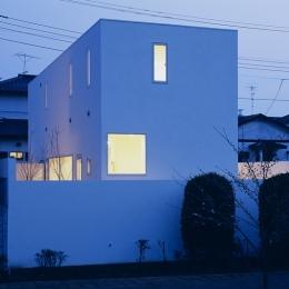 白井の家Ⅱ~東西庭の家 (外観2)