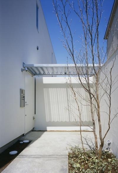 白井の家Ⅱ~東西庭の家 (玄関ポーチ)