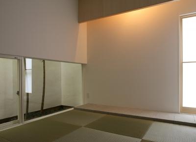 和室2 (白井の家Ⅱ~東西庭の家)