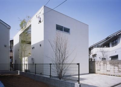 善福寺の家~インナーガーデンの家 (外観1)